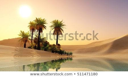 Green oasis in  desert Stock photo © Givaga
