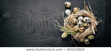 Foto stock: Quail  easter eggs in the nest on wooden background.