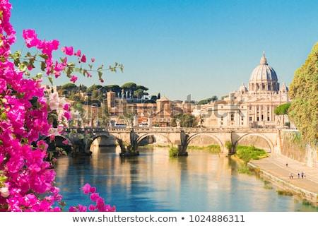 Katedral köprü nehir su Roma İtalya Stok fotoğraf © neirfy