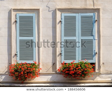 Red Geraniums with blue blinds Stock photo © ivonnewierink