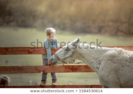 ребенка школы возраст мальчика ранчо Сток-фото © ElenaBatkova