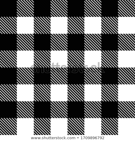 Black and white lumberjack buffalo plaid seamless vector pattern Stock photo © Pravokrugulnik