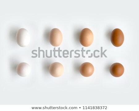 Types of eggs  Stock photo © photosil