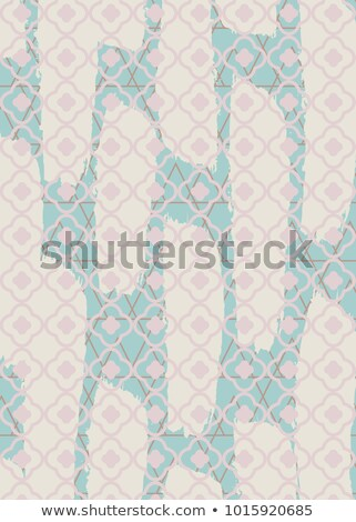 Brushed quatrefoil pastel rectangle rug vector pattern. Stock photo © yopixart