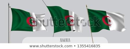 Algeria flag, vector illustration on a white background Stock photo © butenkow