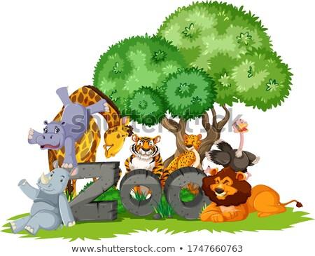 Csoport állatok fa állatkert felirat illusztráció Stock fotó © bluering