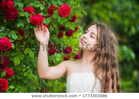 Hihetetlen lány gyönyörű haj park menyasszony Stock fotó © ruslanshramko