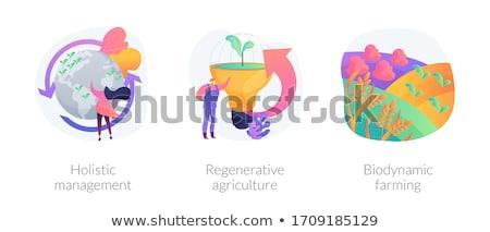 Regenerative agriculture abstract concept vector illustration. Stock photo © RAStudio