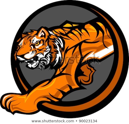 tiger mascot body prowling vector graphic stock photo © chromaco
