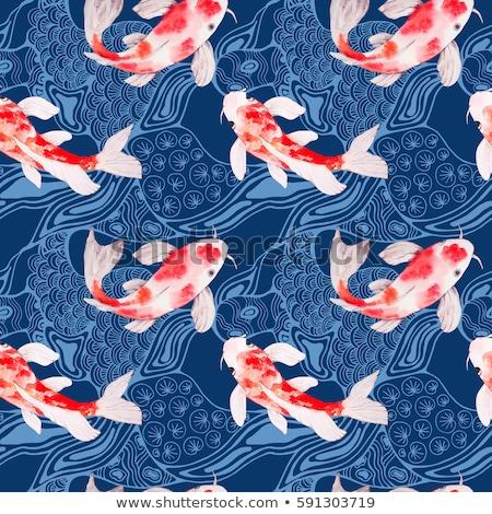日本語 ニシキゴイ スイミング 水 食品 ストックフォト © Arrxxx