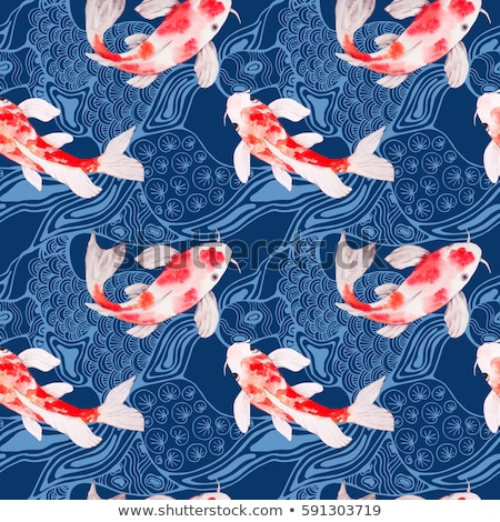 Japans koi zwemmen water vechten voedsel Stockfoto © Arrxxx