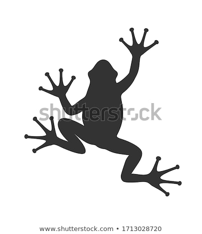 silhouette of toad stock photo © perysty