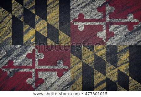 zászló · illusztráció · Maryland · toll · üzlet · festék - stock fotó © vepar5