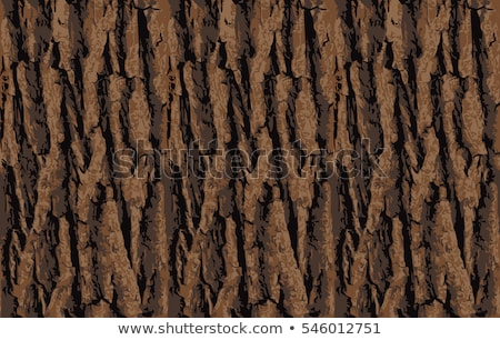 Oak Bark. Seamless Texture. stock photo © tashatuvango