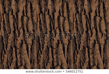 Zdjęcia stock: Oak Bark Seamless Texture