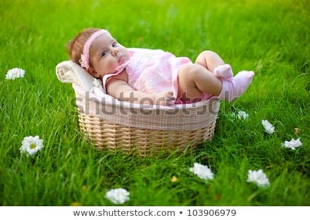 внутри · корзины · весенние · цветы · спальный · девушки - Сток-фото © iriana88w