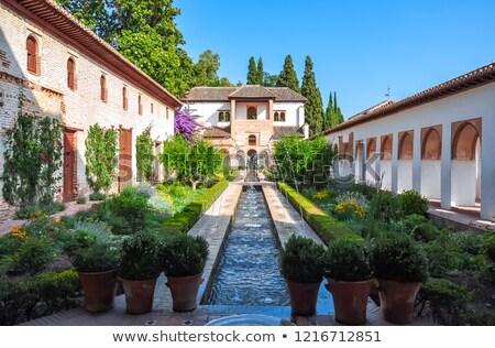 Foto stock: Jardins · Espanha · alhambra · palácio · flor · árvore