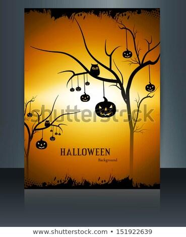 Хэллоуин · вечеринка · луна · трава · назад - Сток-фото © bharat