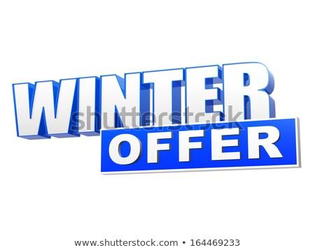 Inverno offrire 3D blu lettere bianco Foto d'archivio © marinini
