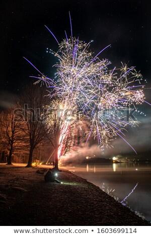 starnberg lake by night stock photo © magann