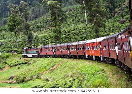 Diesel train scénique montagne suivre Sri Lanka Photo stock © meinzahn