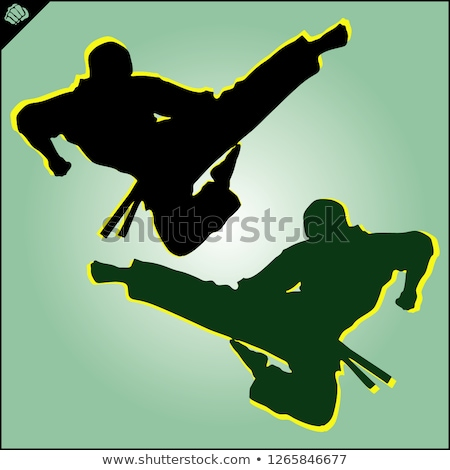 ju-jutsu fighting Stock photo © valkos