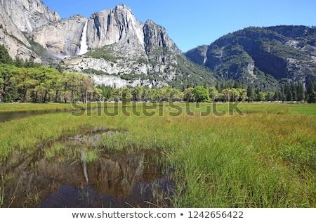 beroemd · romantische · vallei · rivier · boom · bomen - stockfoto © meinzahn