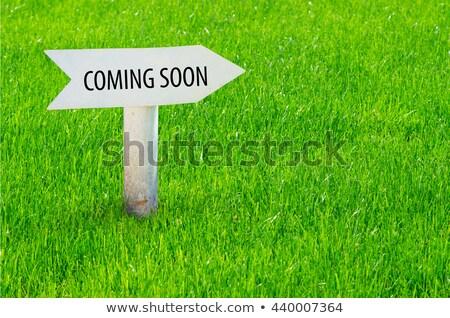 coming soon on green arrow stock photo © tashatuvango