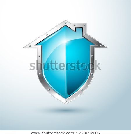 blue shield home security stock photo © anna_leni
