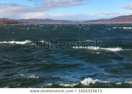 storm over the lake stock photo © digoarpi