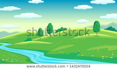 kleurrijk · grintweg · bos · zomer - stockfoto © olandsfokus