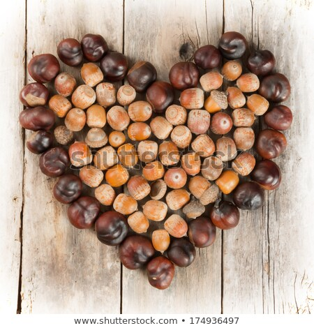 Chestnuts in a heart shape stock photo © sarahdoow