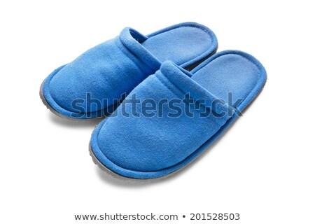Kettő kék házi cipők úszómedence hotel égbolt Stock fotó © bezikus