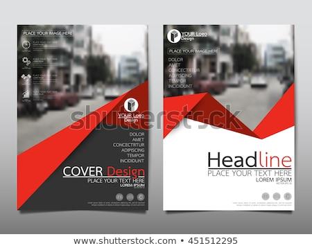 Stock fotó: Modern · vektor · piros · absztrakt · brosúra · könyv