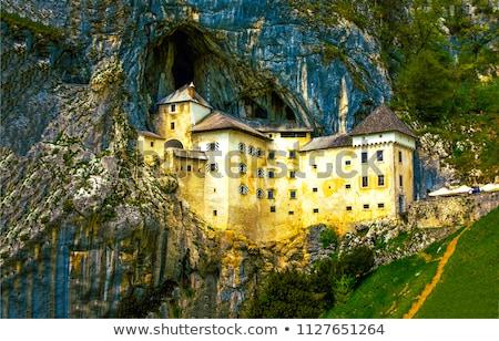 ruiner · château · arbres · vue · ciel · bois - photo stock © kayco
