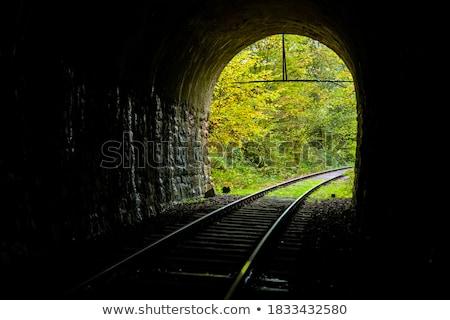 Kicsi tégla alagút épület fény kő Stock fotó © digoarpi