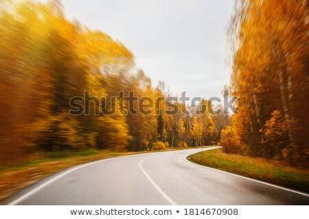 auto · zonsondergang · snelweg · hemel · zon · abstract - stockfoto © blasbike