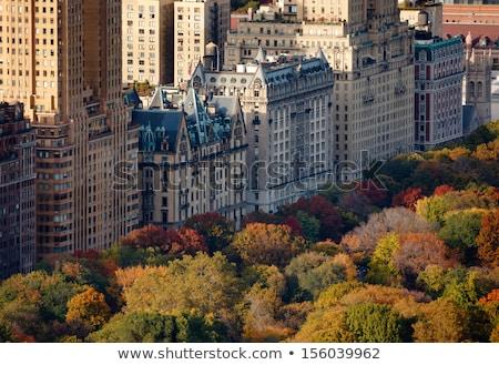 Najaar kleur bomen kant zuiden Central Park Stockfoto © rmbarricarte