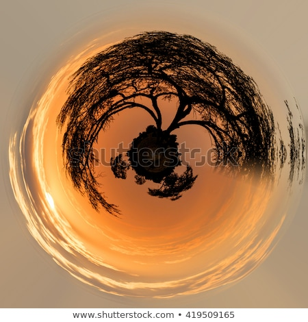 Beautiful Little planet with African sunset Stock photo © artush