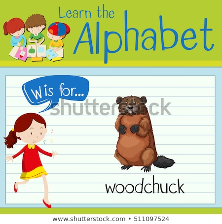 flashcard letter w is for woodchuck stock photo © bluering