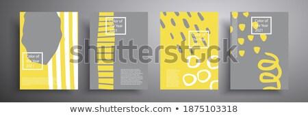 Abstract corporate contrasto brochure design modello di progettazione Foto d'archivio © saicle
