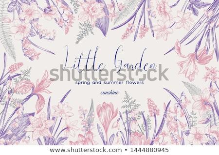 rajz · üdvözlőlap · absztrakt · vektor · terv · baba - stock fotó © cosveta