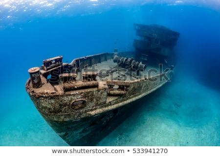 Trópusi hajóroncs hazugságok part sziget Tonga Stock fotó © Undy