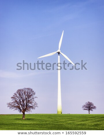 Wind Turbine Single Front  Stock photo © albund