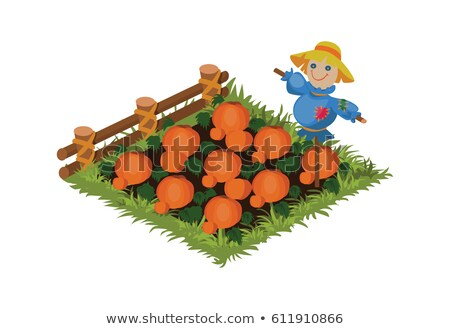 Isometric Cartoon Vegetable Garden Bed Planted with Pumpkin, Tileset Map Element Stock photo © Loud-Mango
