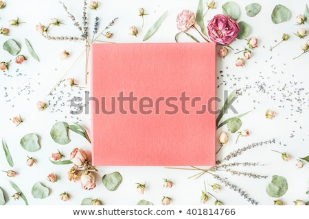 Overhead Shot of Pink and White Roses Stock photo © StephanieFrey