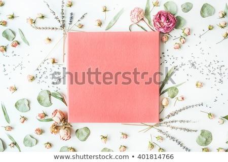 ショット ピンク 白 バラ 美しい 花束 ストックフォト © StephanieFrey