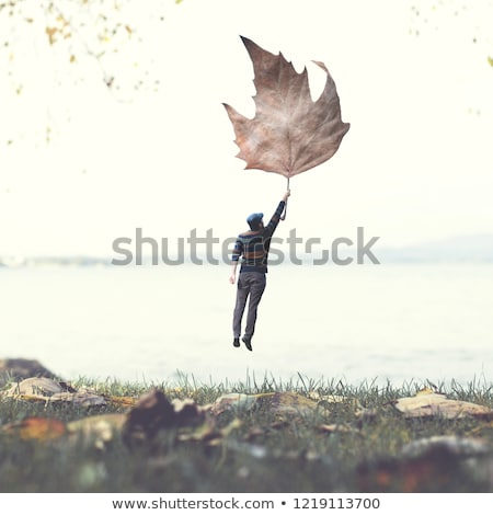 Poëzie inspiratie vliegen uit boek Stockfoto © psychoshadow