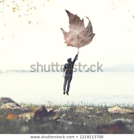 şiir ilham uçan dışarı kitap Stok fotoğraf © psychoshadow