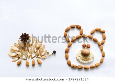 Baba sündisznó eszik fehér fiatal Stock fotó © cynoclub
